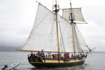 Classic Schooner Pickle for sale